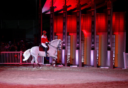 ee: SAKHIR, BAHRAIN - MARCH 22  A horserider of Bahrain performs on March 22, 2014 in Bahrain International Endurance Village during the Bahrain Animal Production Show  Mara ee  2014