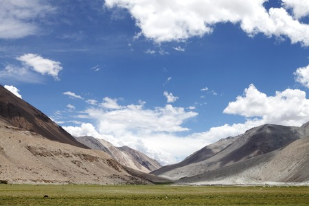 tethys: Striking pasture and Landscape of beautiful Ladakh