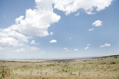 masai mara: The grassland of Masai Mara National Park Stock Photo