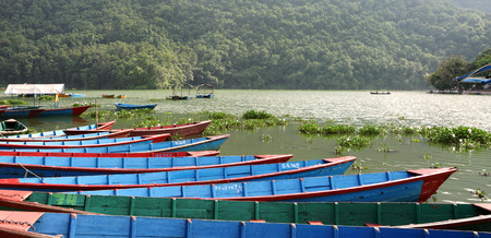phewa: Colorful boats in Phewa Lake Stock Photo