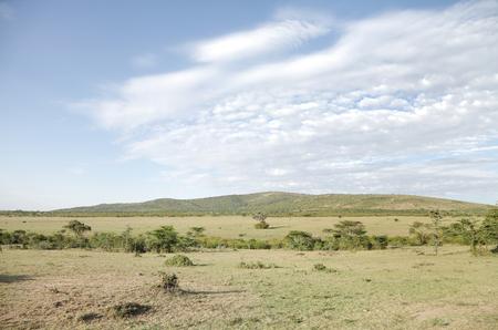 masai mara: Wilderness of savanna at Masai Mara National Park Stock Photo