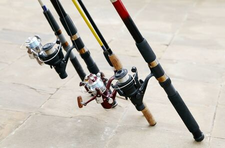 fished: Fishing rods
