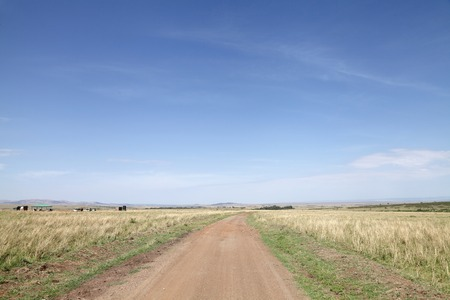 masai mara: Dirt road and the stretching savannah grassland of Masai Mara National Park