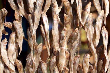 goby: Stoccafisso sul mercato The Black Sea goby