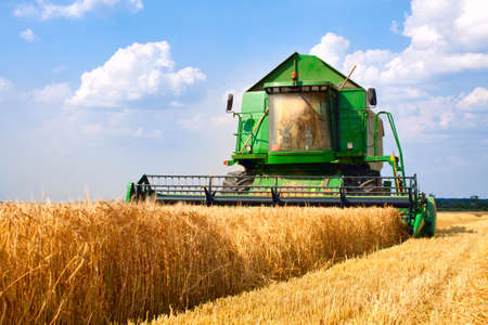 combine harvester working on a wheat field 에디토리얼