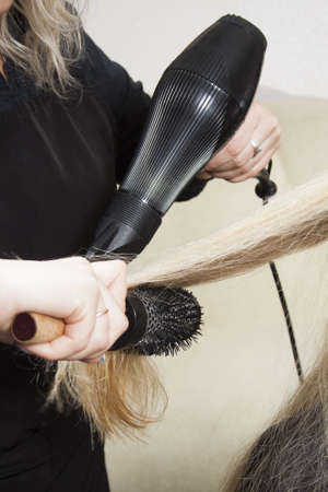 Hairdressers hands drying long blond hair with blow dryer and round brush Stock Photo