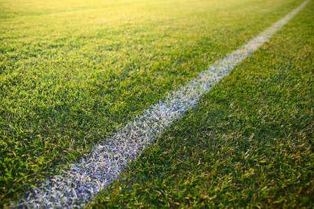 White stripe on the green soccer field photo