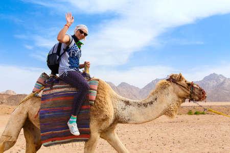 animales del desierto: Joven caucásica montar mujer turista en camellos en el desierto de Egipto