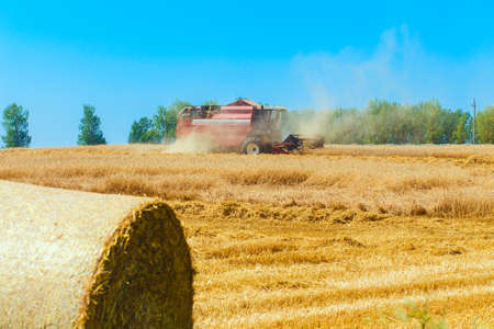 harvester: combine harvester working on a wheat field Stock Photo