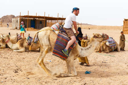 poorness: HURGHADA, EGYPT - MAY 18, 2015: Arab boy, a resident of the Bedouin village rolls for the money tourists on a camel.
