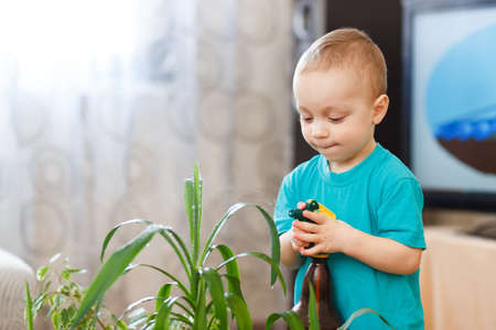 irrigating: cute baby boy irrigating home plants indoors
