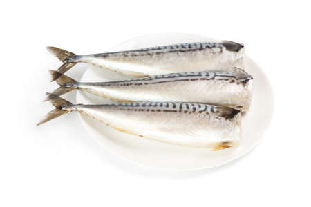 gutted: Salted mackerel on a plate isolated on the white background