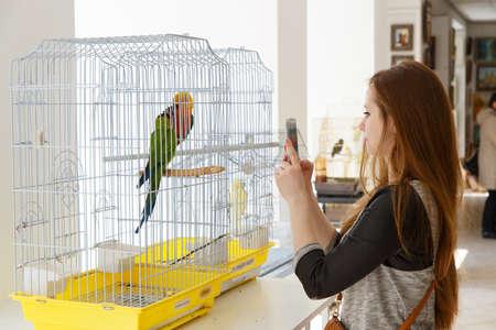 mart: GRODNO, BELARUS - MART 27: Girl photographs with phone the parrot in zoo, Mart 27, 2016 in Grodno, Belarus