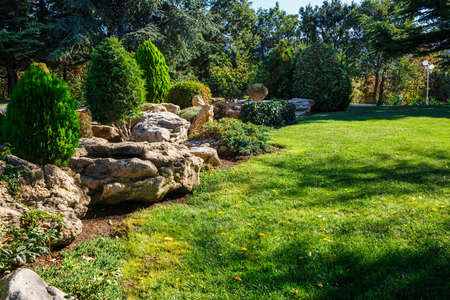 flori culture: Alpine slide and stones on a green meadow in a landscaped garden in the morning sun Stock Photo