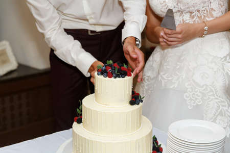 Bride and Groom at Wedding Reception Cutting the Wedding Cake Banco de Imagens