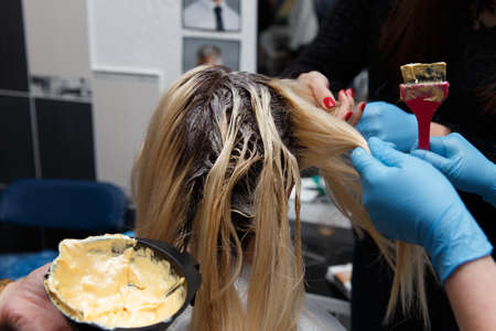 Hairdresser salon. Hair colouring in process. Woman dyeing hairs.