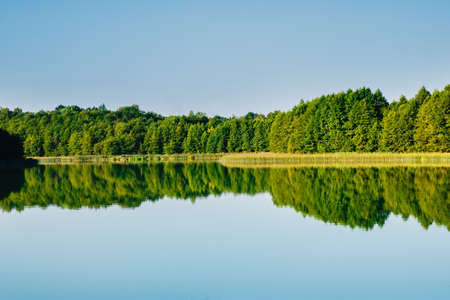 Forest reflection in lake water at sunruse