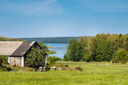 Wooden shed with apiary on green field on shore of Wigry lake in summer landscape, Poland