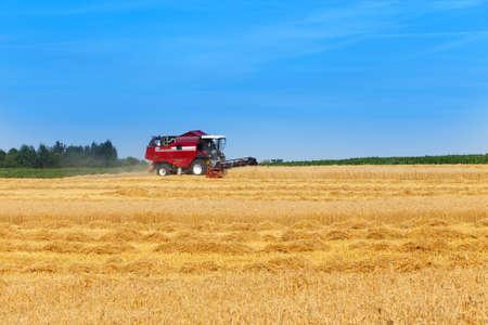 combine harvester working on a wheat field Archivio Fotografico - 129918825