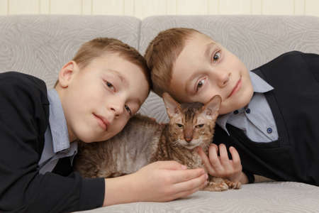Portrait of two caucasian brothers twins with a gray cat at home.