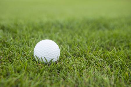 grass close up: Golf ball on green grass, close up Stock Photo