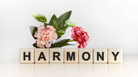 Harmony - a gentle text of relaxation on cubs with a floral background Фото со стока