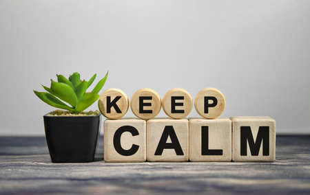 KEEP CALM - text on wooden cubes, green plant in black pot on a wooden background