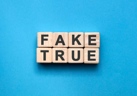 FAKE TRUE - text on wooden cubes on a blue background