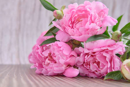 A bouquet of blossoming pink peonies, buds with green foliage on a wooden background 免版税图像