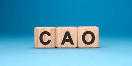 CAO word cube on a blue background. Business concept. Banque d'images