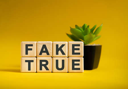 FAKE TRUE - text on wooden cubes, green plant in black pot on a yellow background
