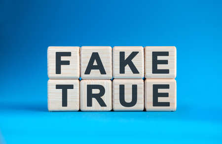 FAKE TRUE - text on wooden cubes on a blue gradient background
