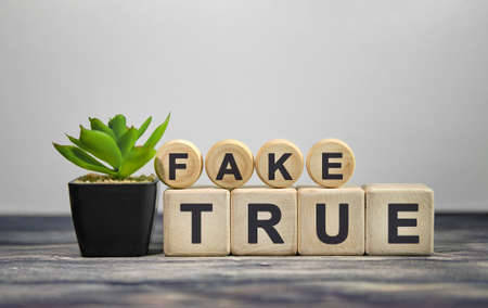 FAKE TRUE - text on wooden cubes, green plant in black pot on a wooden background