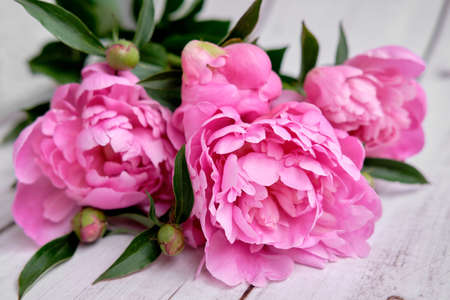 A bouquet of pink crimson peonies lie close-up on a wooden table Banco de Imagens