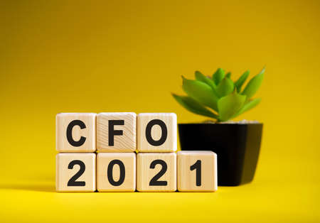 CFO - business financial concept on a yellow background. Wooden cubes and flower in a pot.