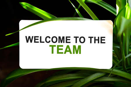 Welcome to the team text on white surrounded by green leaves