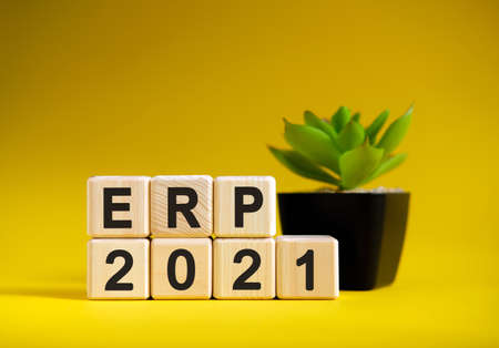 ERP - business financial concept on a yellow background. Wooden cubes and flower in a pot. Stock fotó