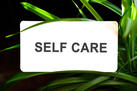 Self care text on white surrounded by green leaves