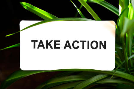 Take Action text on white surrounded by green leaves
