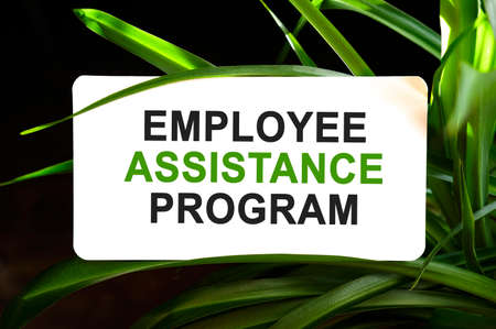 Employee Assistance Program text on white surrounded by green leaves Stock fotó