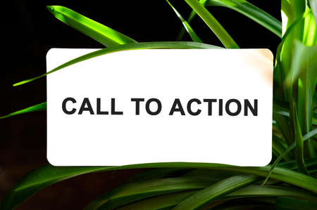 Call To Action text on white surrounded by green leaves