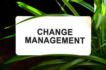 Change management text on white surrounded by green leaves