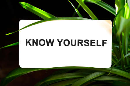 KNOW YOURSELF text on white surrounded by green leaves