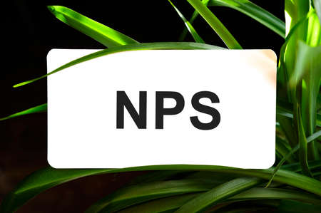 NPS text on white surrounded by green leaves Stock fotó