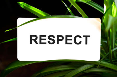 RESPECT text on white surrounded by green leaves