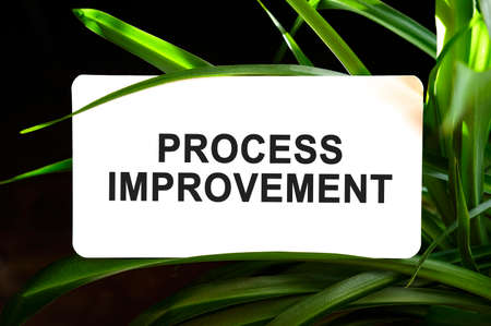 Process improvement text on white surrounded by green leaves 免版税图像