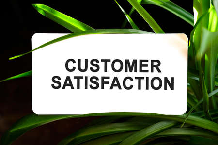 Customer Satisfaction text on white surrounded by green leaves Stock fotó