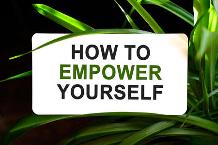 HOW TO EMPOWER YOURSELF text on white surrounded by green leaves 免版税图像
