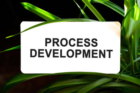Process development text on white surrounded by green leaves 免版税图像