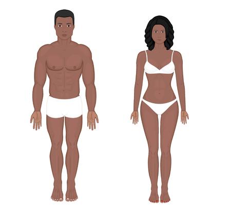 African American Indian man en vrouw naakte lichaam in volle groei in ondergoed. Vooraanzicht. Vectorillustratie voor reclame, medische (gezondheidszorg), bodybuilding, sportpublicaties. EPS 8. Stock Illustratie